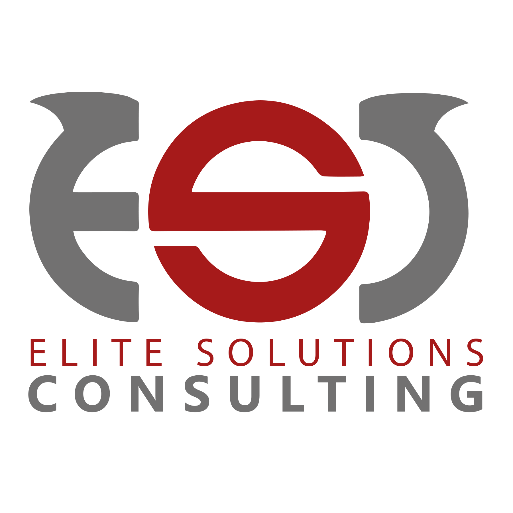 ELITE SOLUTIONS CONSULTING
