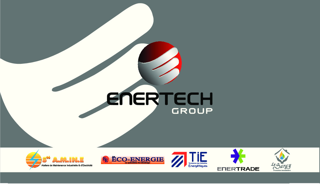 STE A.M.IN.E  ENERTECH GROUP